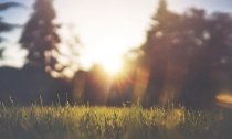 m6rt4myfq7ct8j9m2aec_jakegivens-sunset-in-the-park