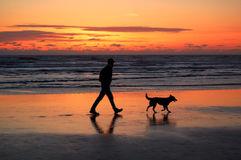hombre-y-perro-que-recorren-en-la-puesta-del-sol-5528837